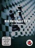 Big Database 2013