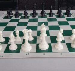 Chess Pieces Standard + 2Q